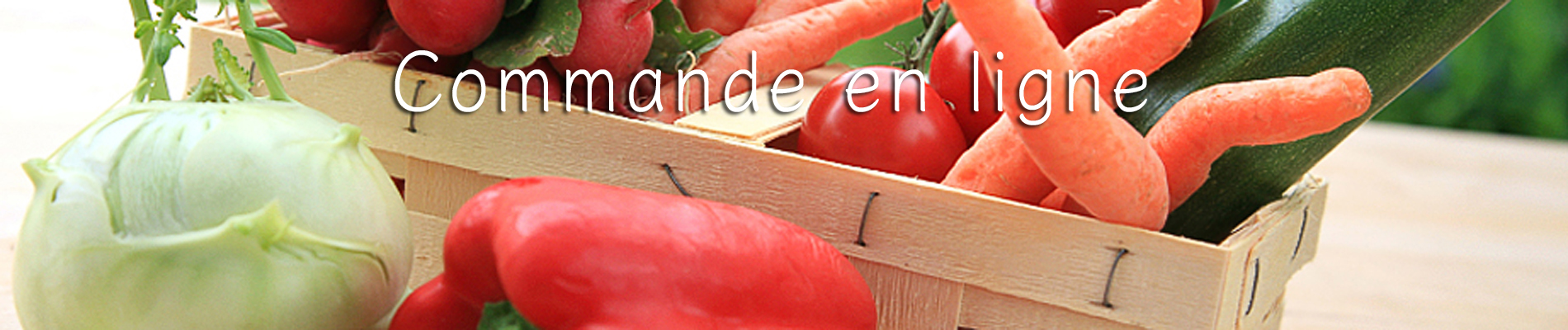 Légumes_iStock_000015252203_1900x400_Titre